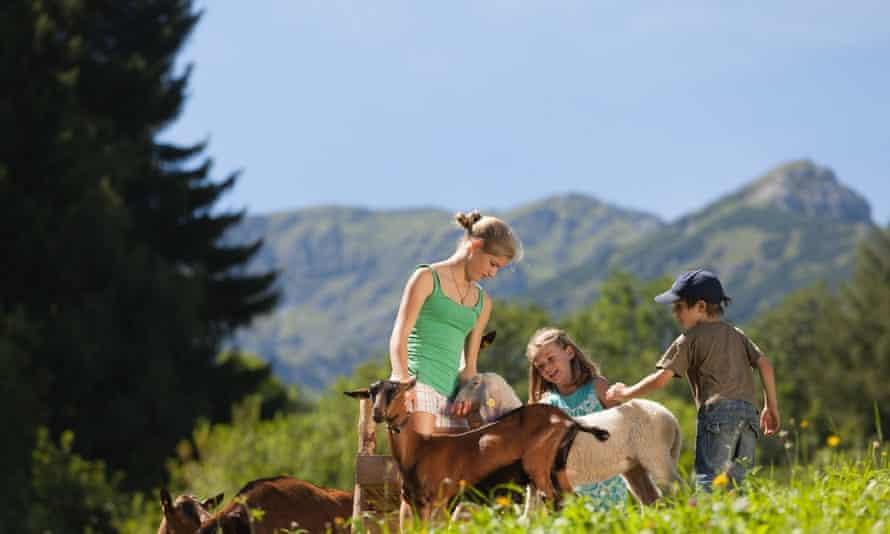 Farm Holidays in Tirol August 2012Muttersfoto mario webhofertirolurlaub am bauernhof