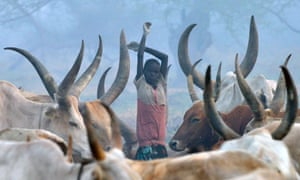 A young girl stands among cattle at a traditional cattle camp at dawn at the town of Nyal, an administrative hub in Unity state, South Sudan in February 2015.