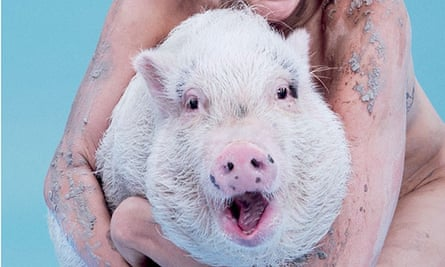 Bubba Sue the pig, cover star of Paper magazine