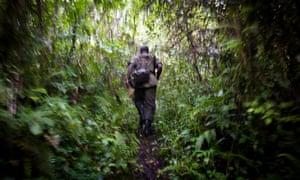 A ranger in Virunga national park, Democratic Republic of the Congo.