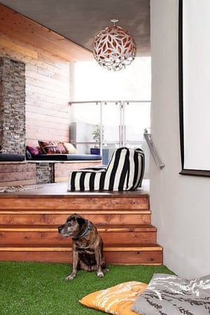 Homes: LA dog