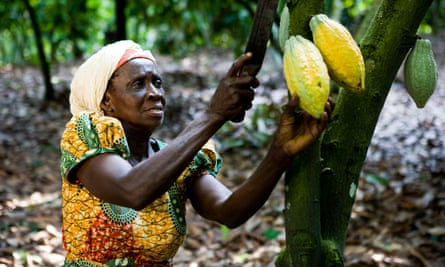 Companies like Hershey's have committed to using only certified cocoa in their chocolate products. But is that enough to raise the standard of living for cocoa farmers around the world?