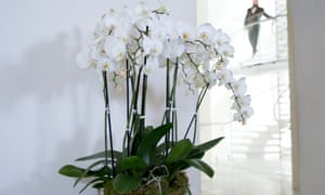 Floral arrangements at the British Fashion Council