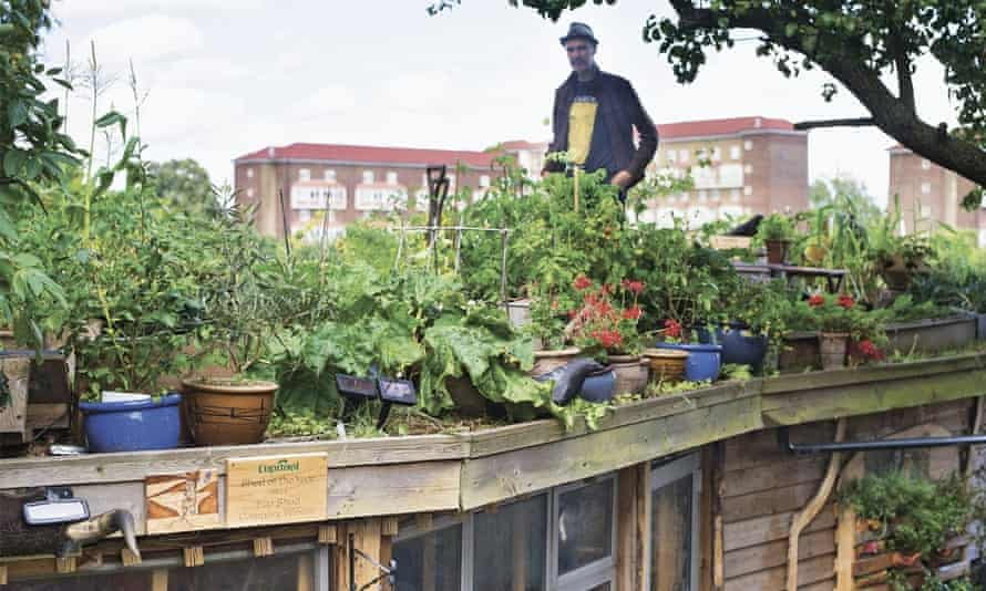 When Joel Bird couldn't get an allotment, he turned his shed roof into growing space.