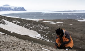 A palaeontologists digging at the site where the fossil was found on Seymour Island, Antarctica.
