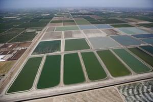 Fresno-Clovis Regional Wastewater Treatment Facility is seen next to farm fields in Fresno, California, United States.