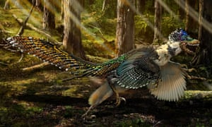 An artist's impression of the new short-armed and winged feathered dinosaur Zhenyuanlong suni found in China