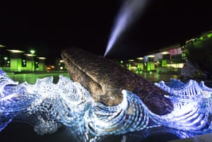 Two lifesize whales, made from Somerset willow and plastic bottles, are unveiled in Bristol to mark the city's European Green Capital status. The artwork, designed by Cod Steaks, represents the 8m tons of plastic that ends up in oceans each year