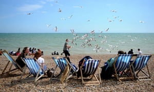 Seagulls and people in deckchairs on hove beach