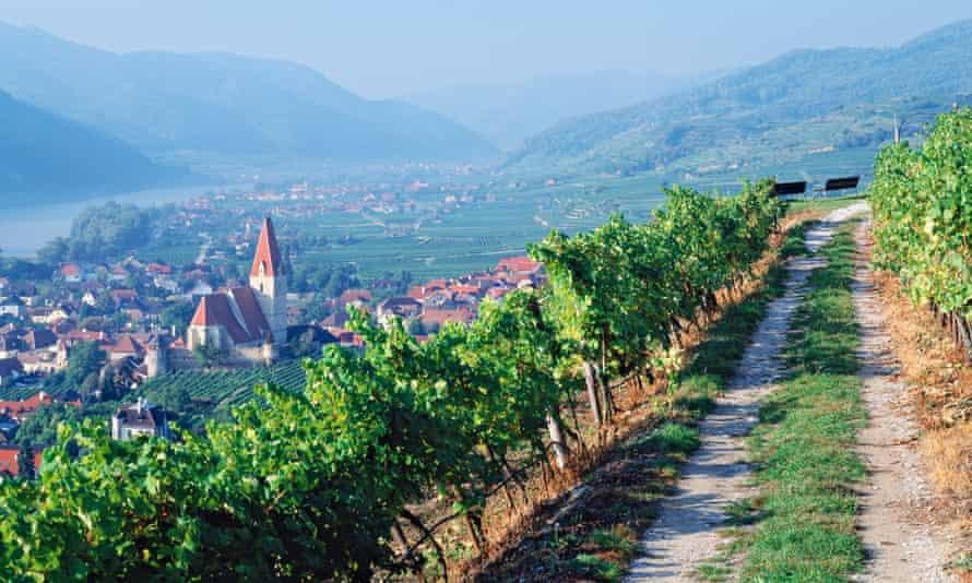 Austria, Weissenkirchen in der Wachau, Danube