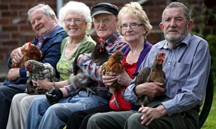 older people hens