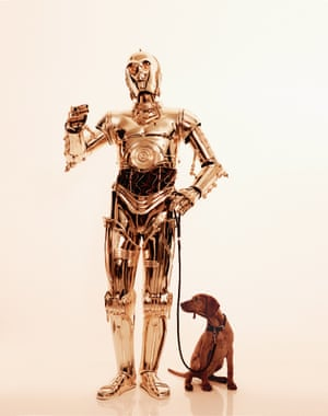 With his high-shine style, C-3P0 shows that the only accessory he needs is a dog.