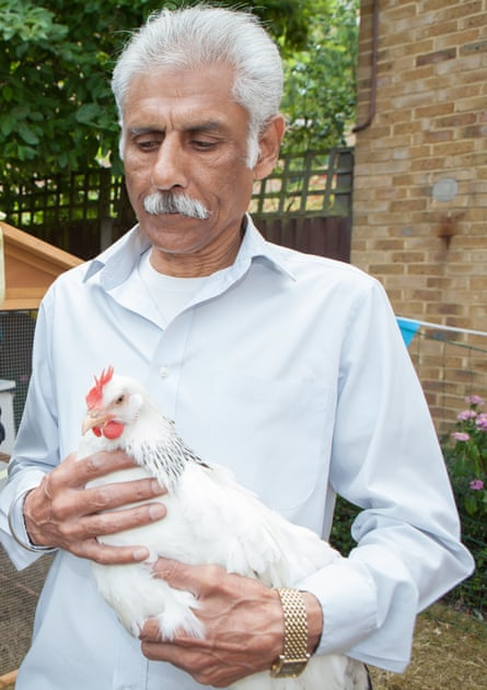 Elmgrove House resident Ashok Patel has proved 'a natural': 'I like the hens and the hens like me,' he says.