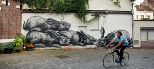 Street art by Roa on Tempelhof