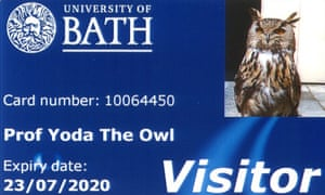 Yoda the European eagle owl has been issued with a library card