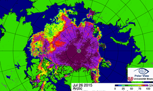 Arctic sea ice concentration.