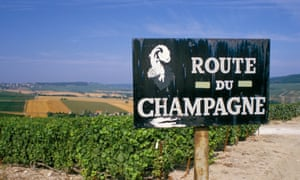 sign and vineyard near epernay, champagne region region