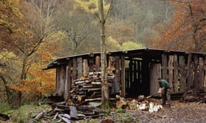Warden chopping wood for use in the Biomass boiler at Gibson Mill at Hardcastle Crags, West Yorkshire.