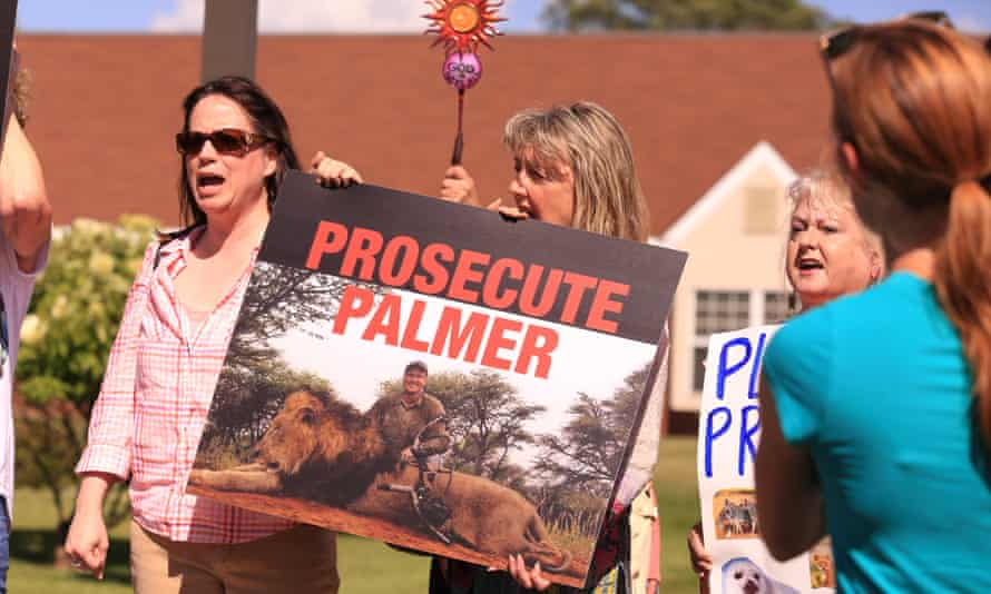 29 Jul 2015, Bloomington, Minnesota, USA --- Protesters call for the prosecution of local dentist and big game hunter, Walter Palmer, as he remains hidden from the media and the public. Palmer has admitted to the killing of the popular and majestic lion, Cecil, in Zimbabwe.