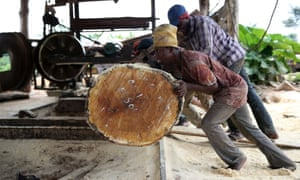 Driving up tax revenues could unleash countries' full potential … labourers roll a log into a milling machine at a sawmill near Igede-Ekiti township, south-west Nigeria.