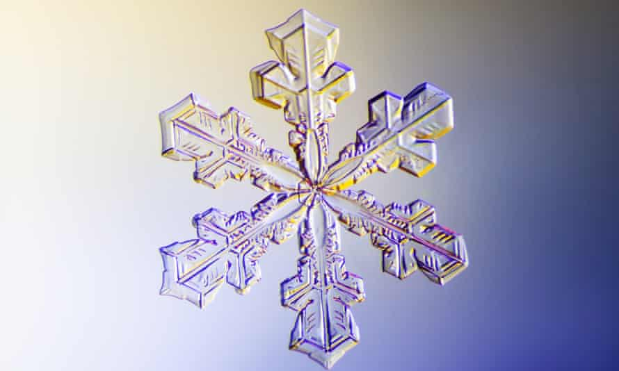 a snowflake photographed under a microscope.