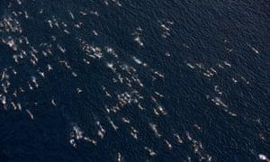 Bosphorus cross continental swimming race, Istanbul, Turkey