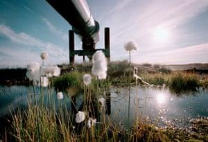 Liquid money … the Trans-Alaska pipeline.