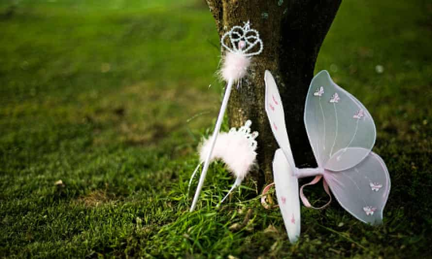Fairy wings, wand and tiara resting against a tree