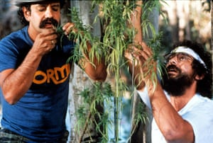 Cheech and Chong's 1981 crime comedy Nice Dreams.