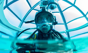 A diver visits one of the Nemo's Garden growing pods.