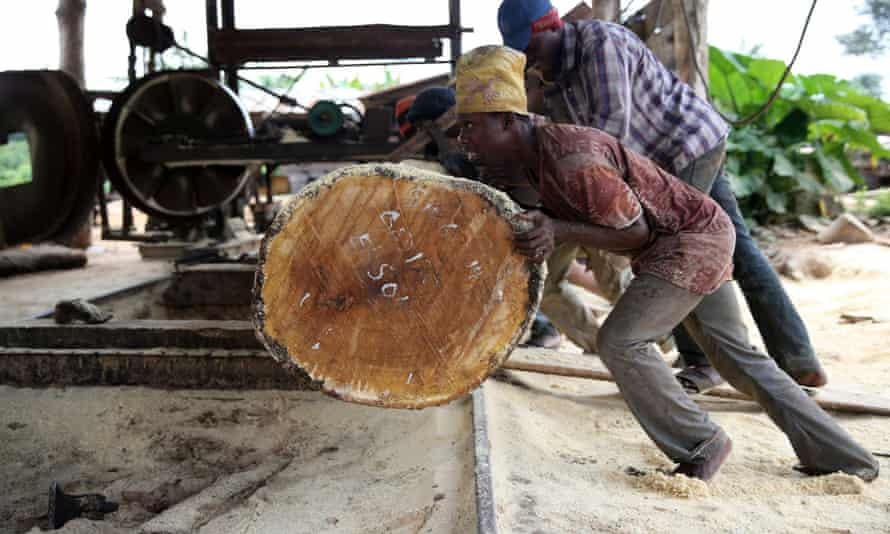 Labourers roll a log into a milling machine at a sawmill in south-west Nigeria.