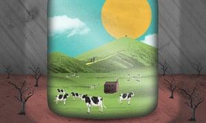 Nate Kitch illustration on the rural economy