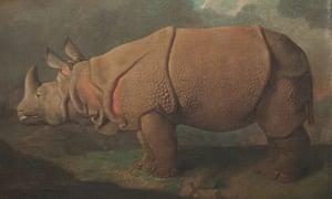 Stubbs painting of rhinocerous