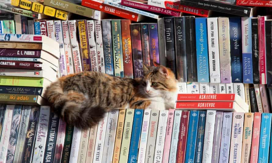 Book Bazaar, Bazaar Quarter.