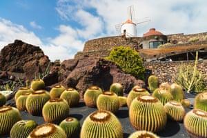 Jardin de Cactus, Lanzarote.