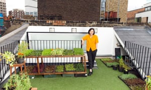 Wai Ting grows basil, kale and tomatoes.