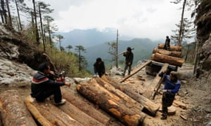 Workers load Illegally logged timber onto a truck in Sawlaw, northern Kachin State, Burma.