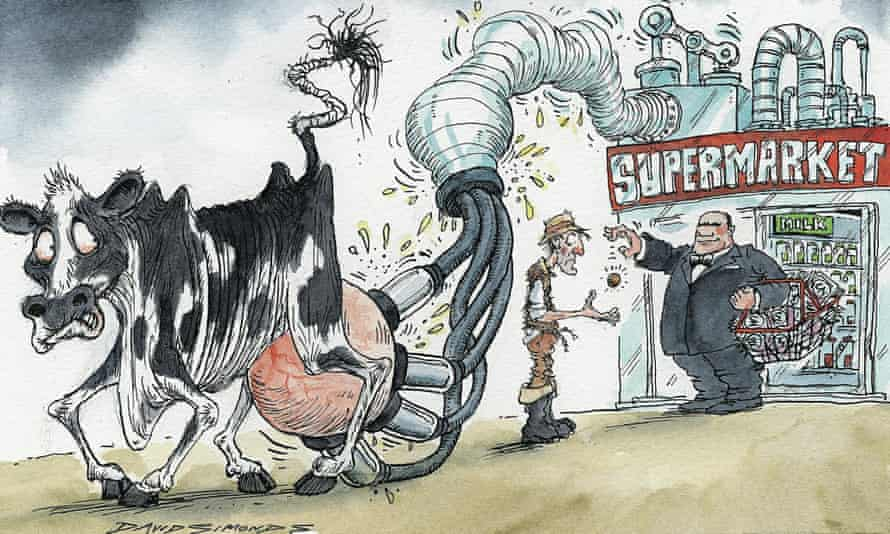 Cartoon by David Simonds on farmers' fight to win better milk prices