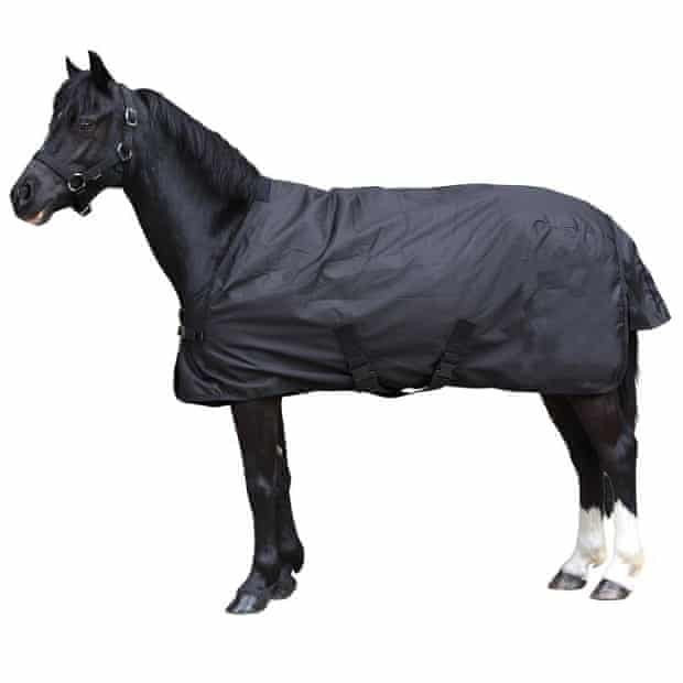 Navy pony jacket by Fouganza