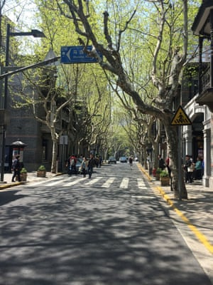 Shanghai road with trees