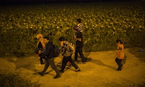 Syrian refugees walk among fields in northern Greece: the southern European countries of Greece, Italy and Spain have taken in 25% of the Syrian refugees who have reached Europe. The proportion offered asylum in Britain is fewer than 1%.