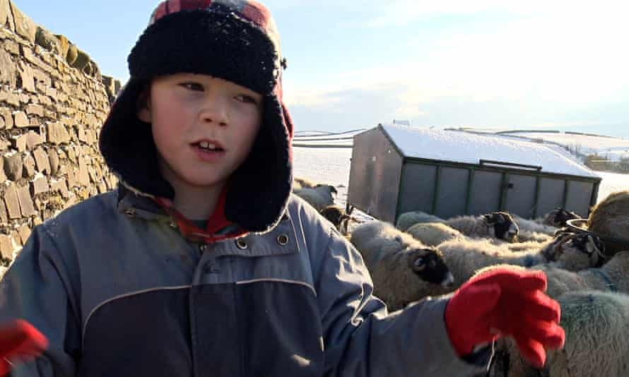 Addicted to Sheep: captures the beauty and bleakness of the environment.