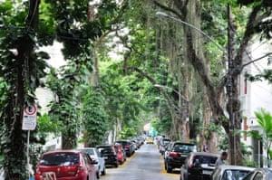 bucolic street in Gávea