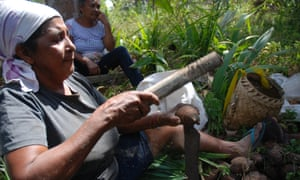 Teresa Teodoro Sousa breaking open babassu in a palm grove owned by the Catholic diocese in Maranhao.