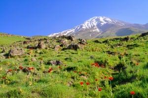 The Alborz mountains.