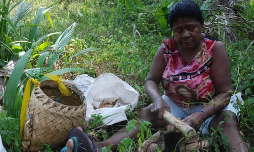 Judite Teodora dos Santos, breaking babassu in a palm grove in Maranhao.
