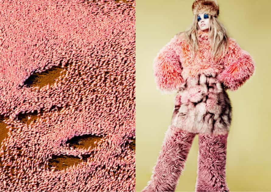 Pattern pairs: a flock of flamingoes, and a modern take on steppes fashion.