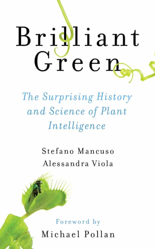 A new book explores the intelligence and sentience of plants.