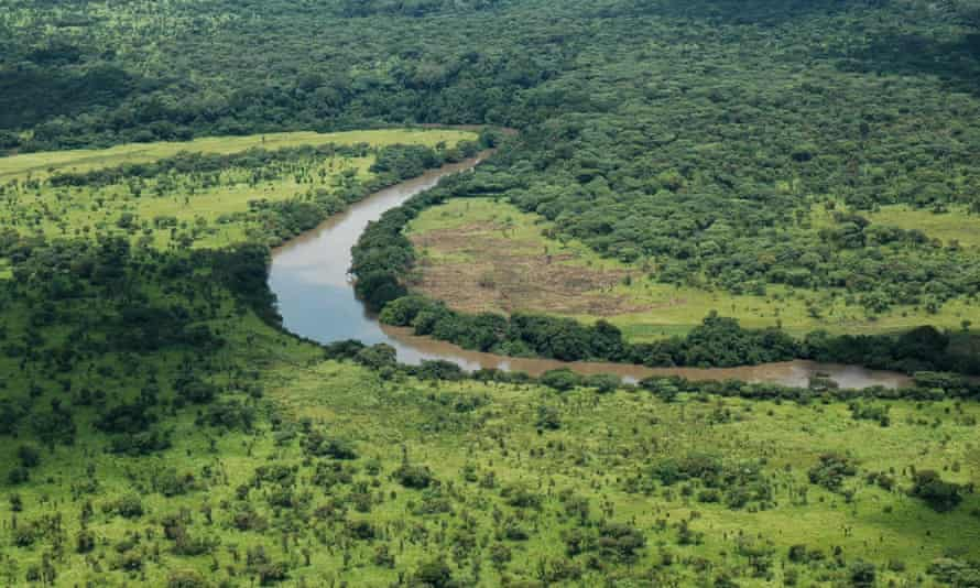 Aerial view of Garamba National Park, Democratic Republic of Congo. Last year132 elephants were killed in the park by the Lord's Resistance Army to finance it's terrorist operations.