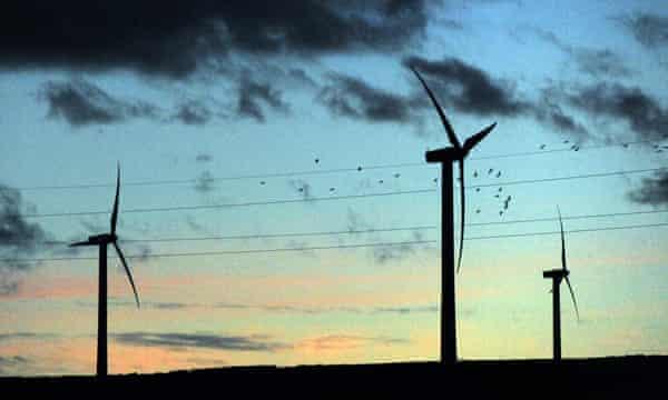 A flock of birds flies past wind turbines in the evening light, at Scottish Power's Dun Law windfarm south of Edinburgh